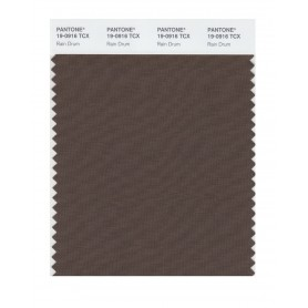 Pantone 19-0916 TCX Swatch Card Rain Drum