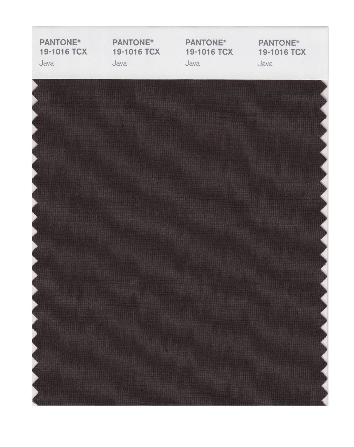 Pantone 19-1016 TCX Swatch Card Java