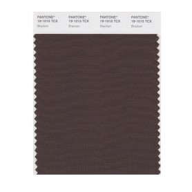 Pantone 19-1015 TCX Swatch Card Bracken