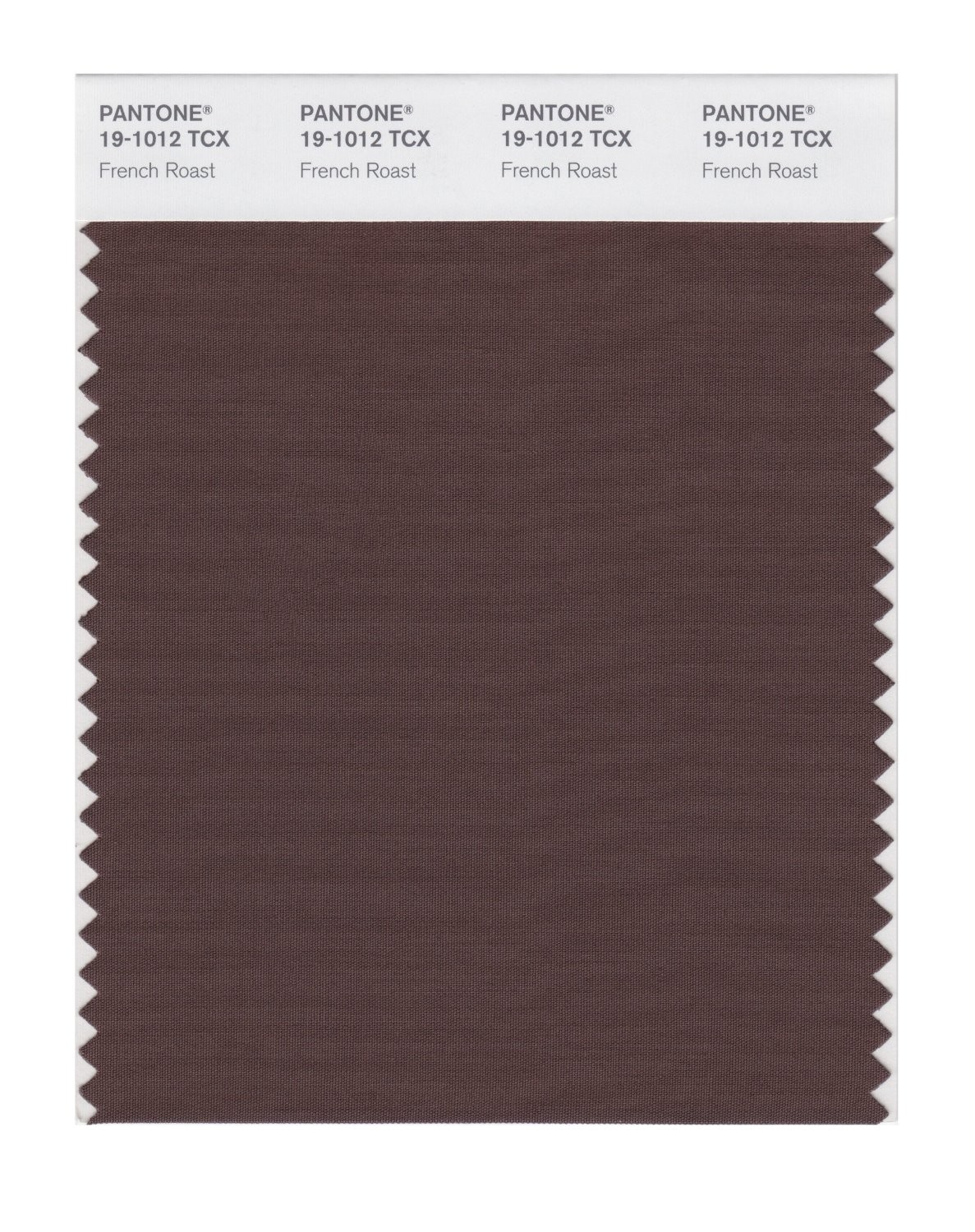 Pantone 19-1012 TCX Swatch Card French Roast