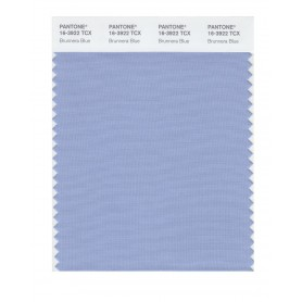Pantone 16-3922 TCX Swatch Card Brunnera Blue