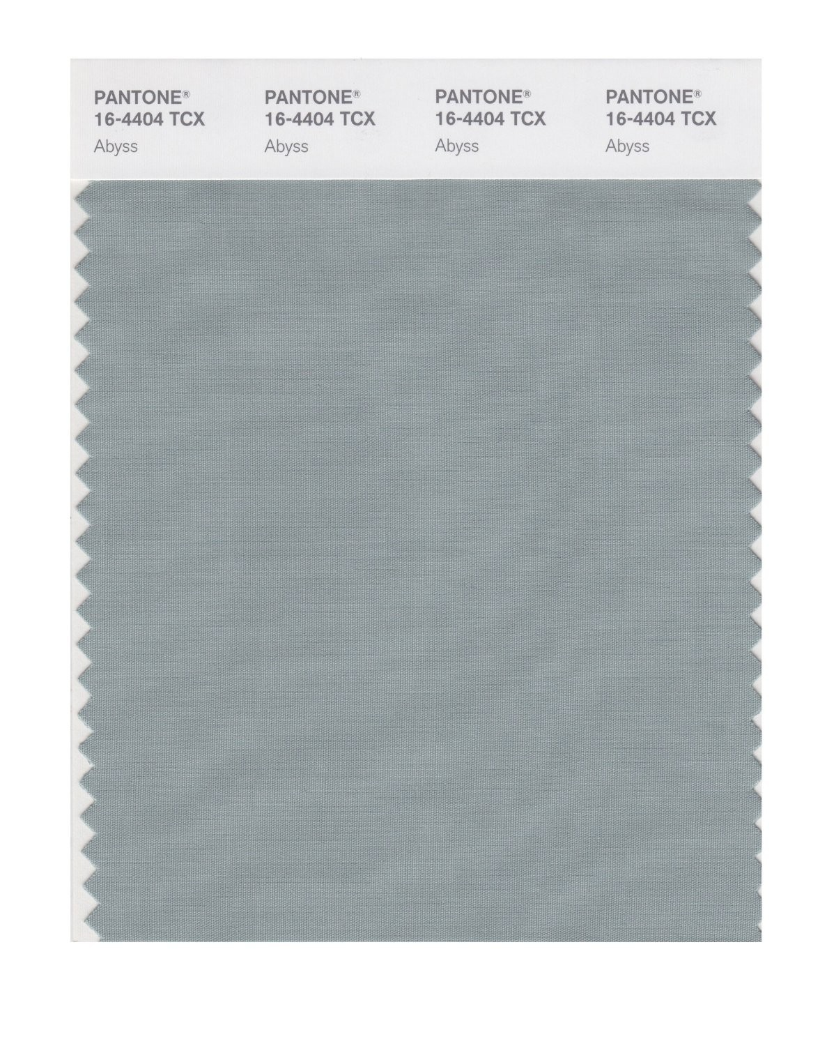Pantone 16-4404 TCX Swatch Card Abyss