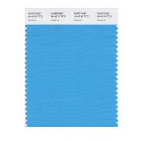 Pantone 16-4530 TCX Swatch Card Aquarius