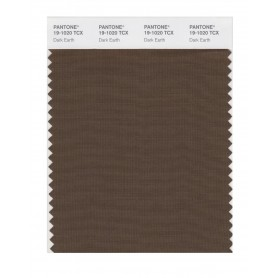 Pantone 19-1020 TCX Swatch Card Dark Earth