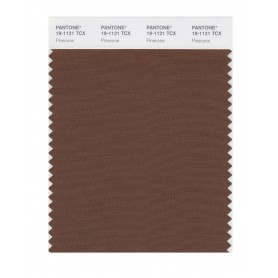 Pantone 19-1121 TCX Swatch Card Pinecone