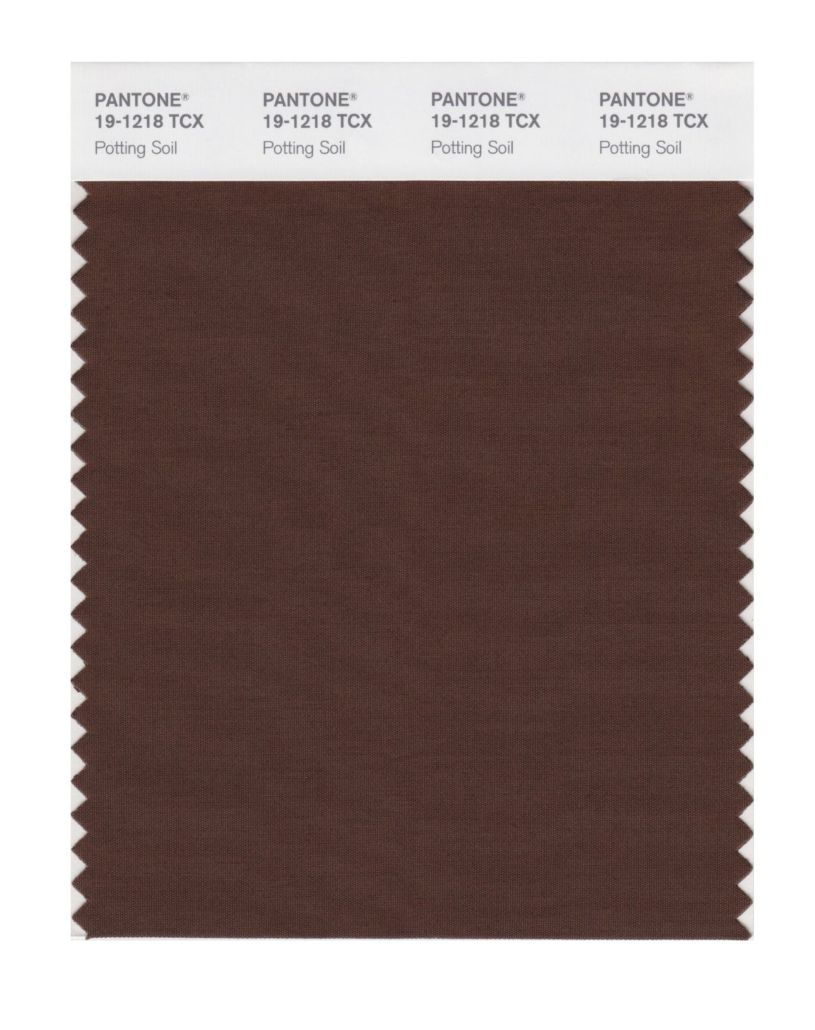 Pantone 19-1218 TCX Swatch Card Potting Soil