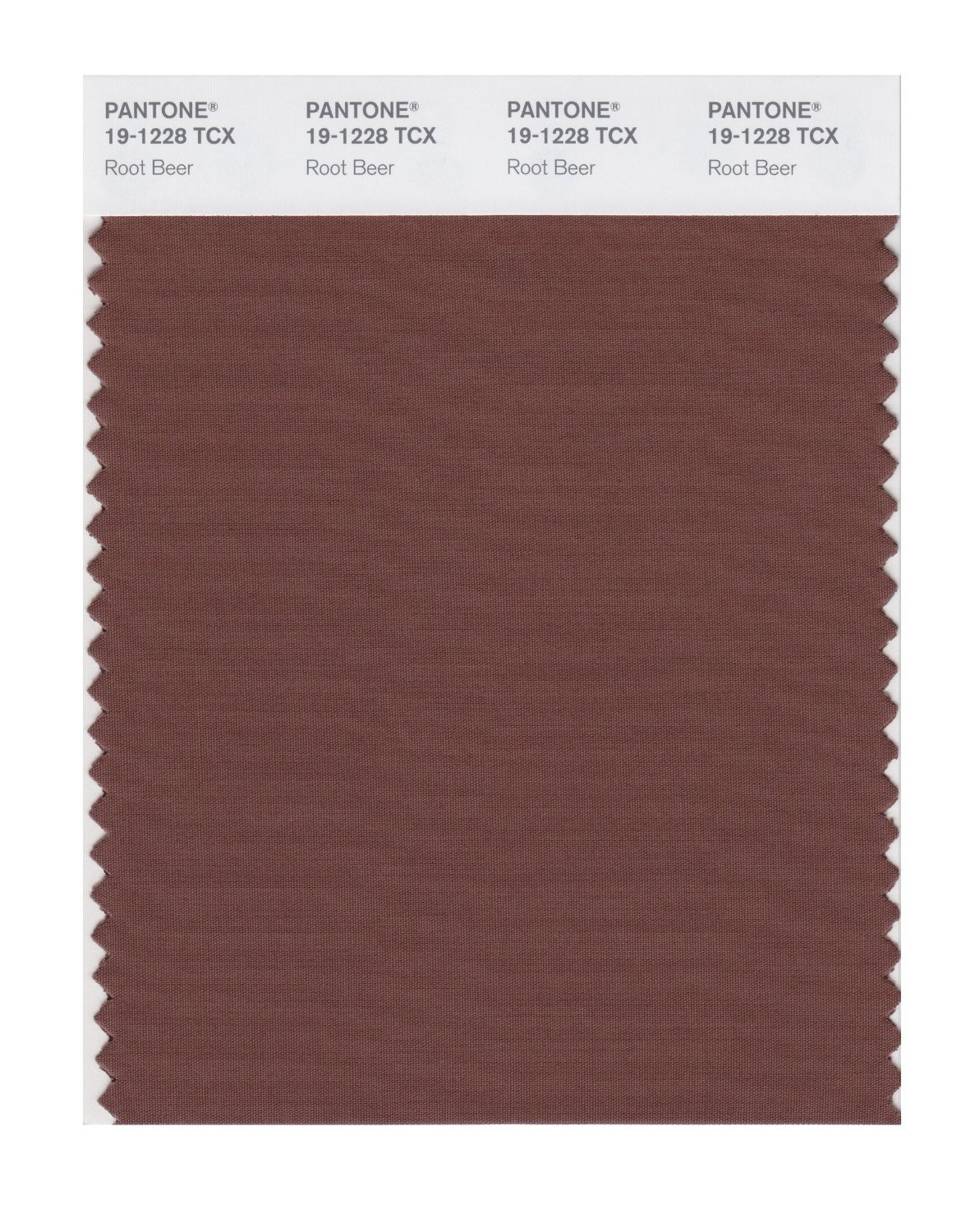 Pantone 19-1228 TCX Swatch Card Root Beer