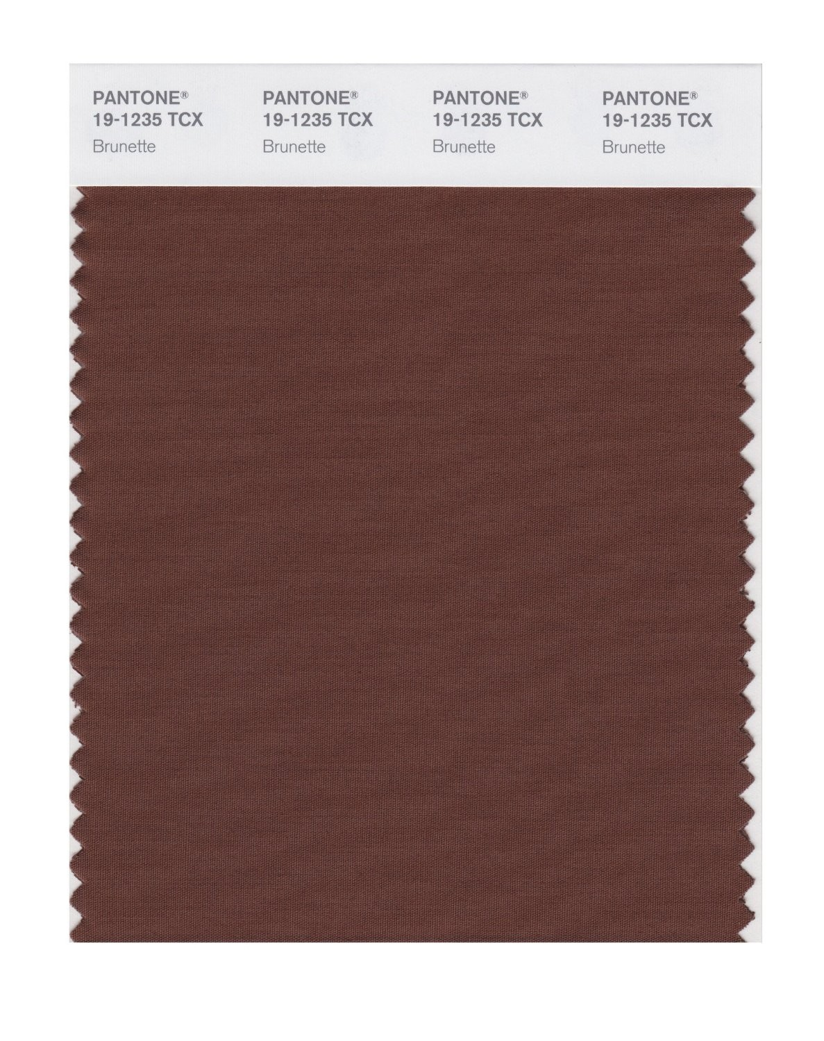 Pantone 19-1235 TCX Swatch Card Brunette