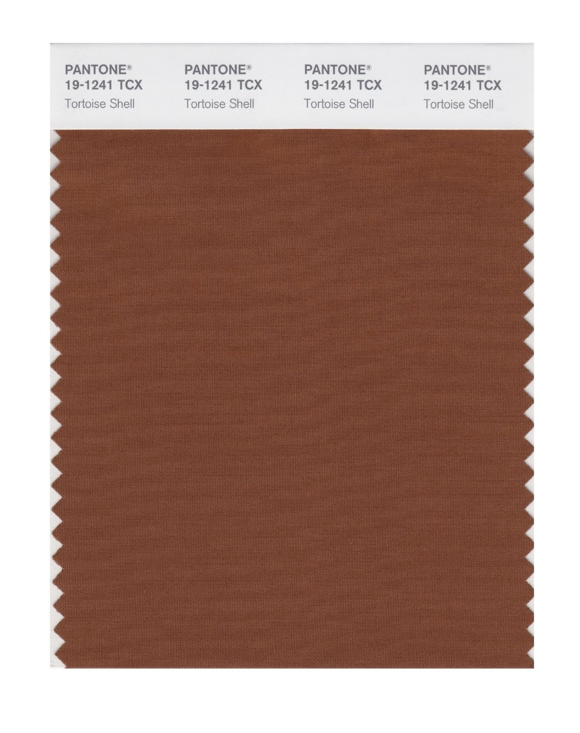 Pantone 19-1241 TCX Swatch Card Tortoise Shell