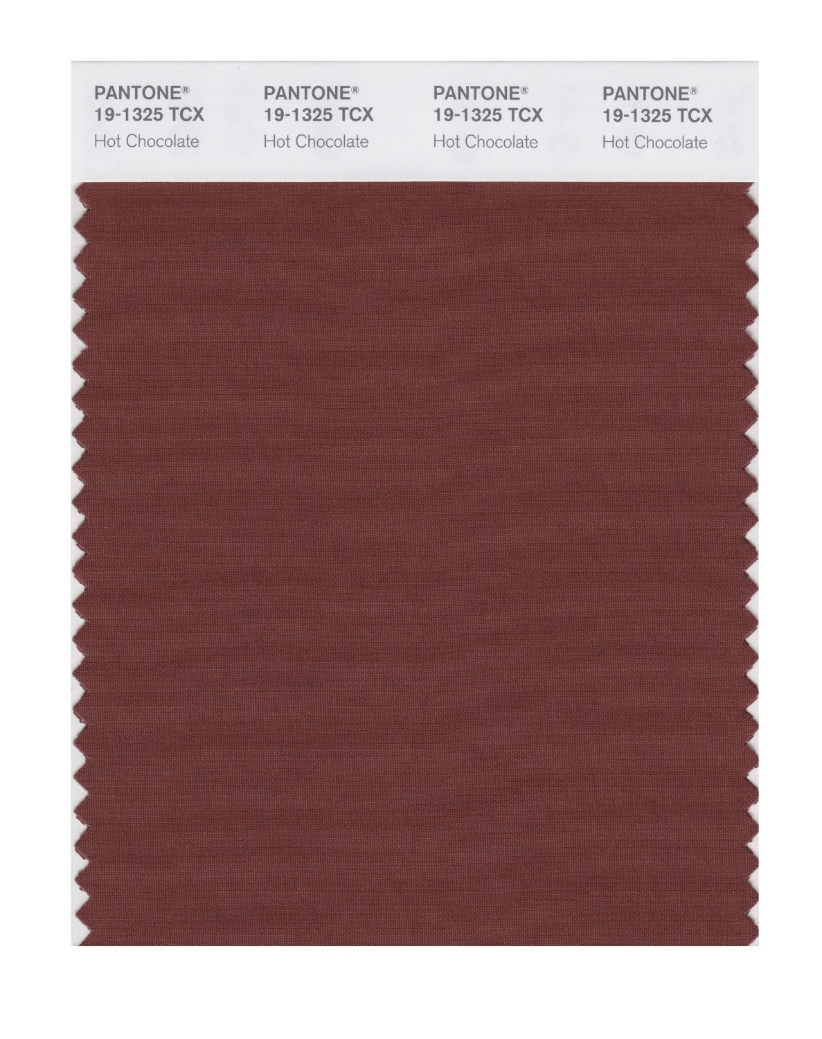 Pantone 19-1325 TCX Swatch Card Hot Chocolate