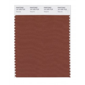 Pantone 19-1333 TCX Swatch Card Sequoia