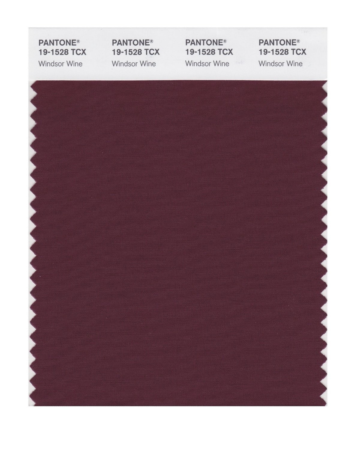 Pantone 19-1528 TCX Swatch Card Windsor Wine
