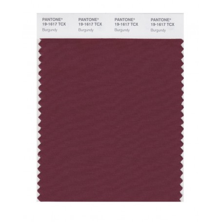 Pantone 19-1617 TCX Swatch Card Burgundy