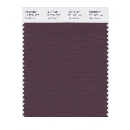 Pantone 19-1620 TCX Swatch Card Huckleberry