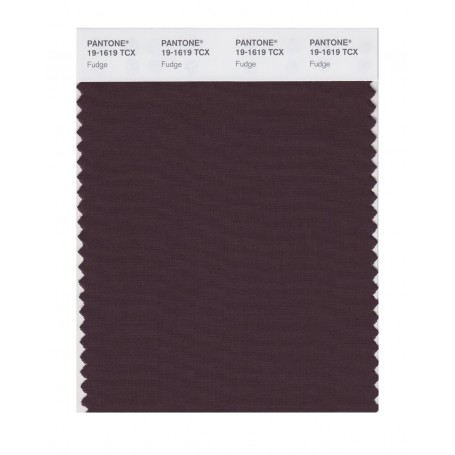 Pantone 19-1619 TCX Swatch Card Fudge