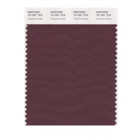 Pantone 19-1621 TCX Swatch Card Catawba Grape