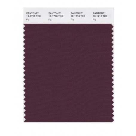 Pantone 19-1718 TCX Swatch Card Fig