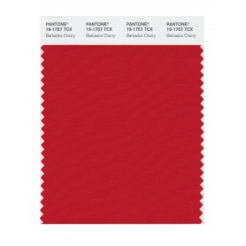 Pantone 19-1757 TCX Swatch Card Barbados Cherry