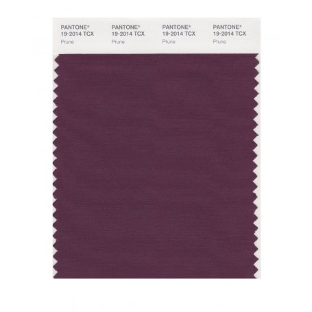Pantone 19-2014 TCX Swatch Card Prune