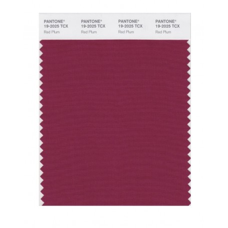 Pantone 19-2025 TCX Swatch Card Plum