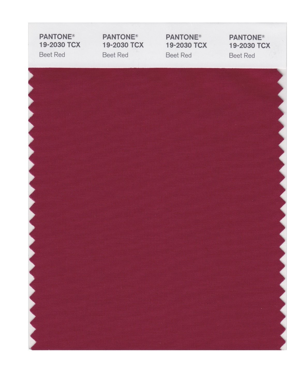 Pantone 19-2030 TCX Swatch Card Beet Red