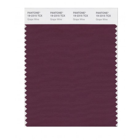 Pantone 19-2315 TCX Swatch Card Grape Wine