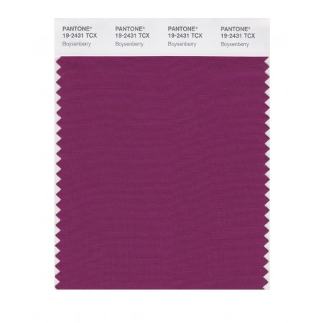 Pantone 19-2431 TCX Swatch Card Boysenberry