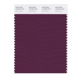 Pantone 19-2524 TCX Swatch Card Dark Purple