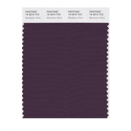 Pantone 19-2816TCX Swatch Card Loganberry