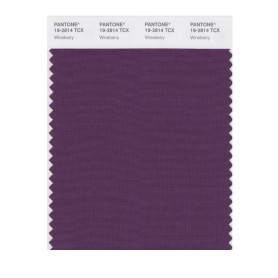 Pantone 19-2814 TCX Swatch Card Wineberry