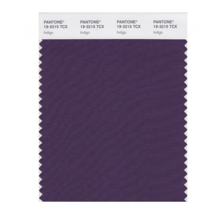Pantone 19-3215TCX Swatch Card Loganberry