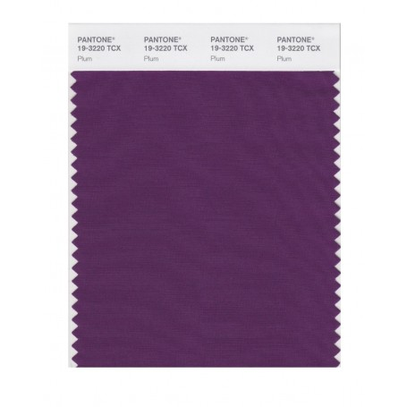 Pantone 19-3220 TCX Swatch Card Plum