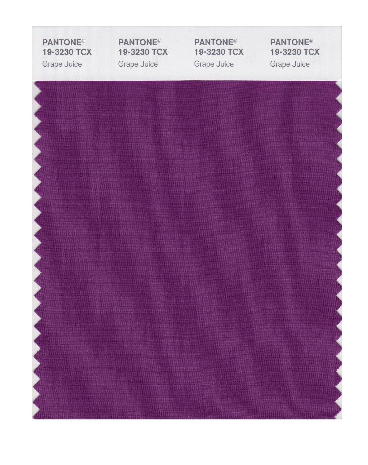 Pantone 19-3230 TCX Swatch Card Grape Juice