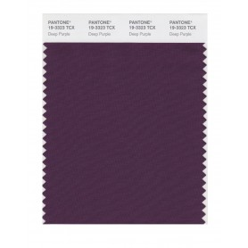 Pantone 19-3323 TCX Swatch Card Deep Purple