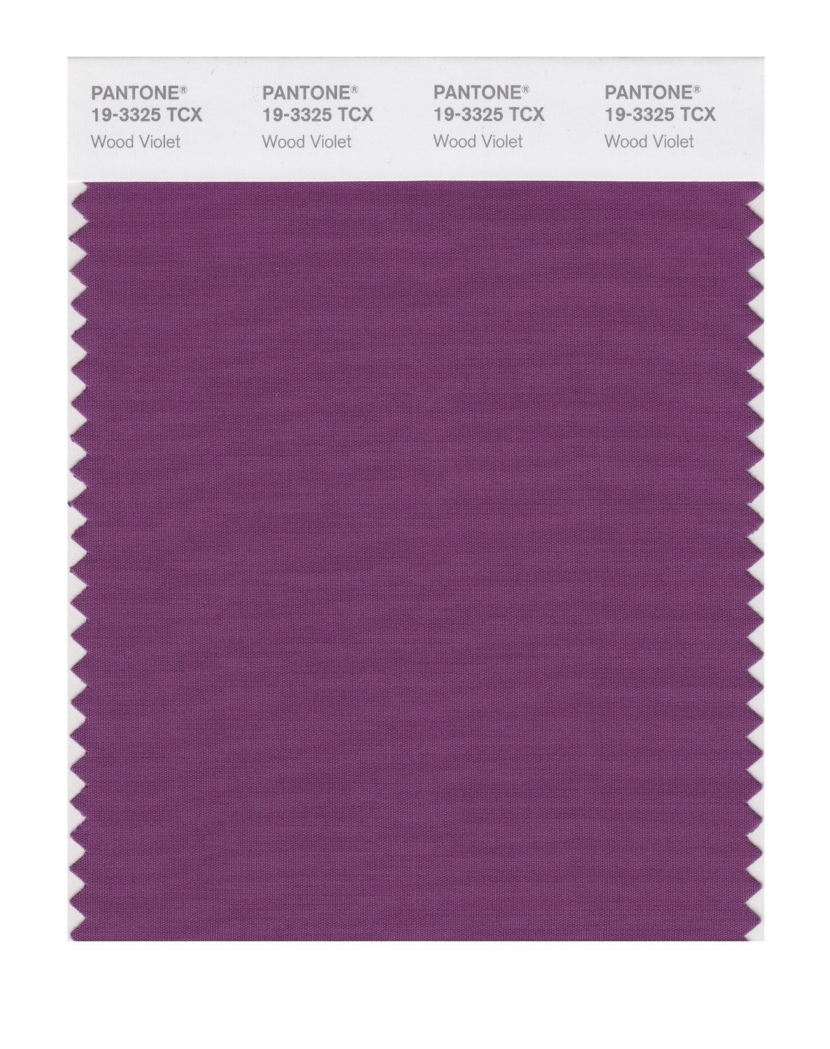 Pantone 19-3325 TCX Swatch Card Wood Violet