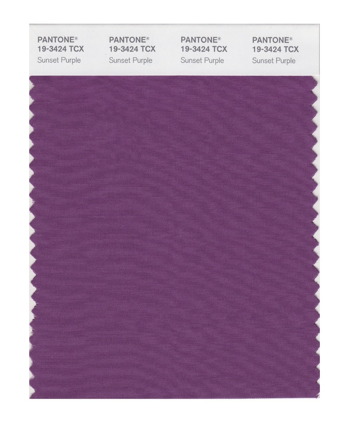 Pantone 19-3424 TCX Swatch Card Sunset Purple