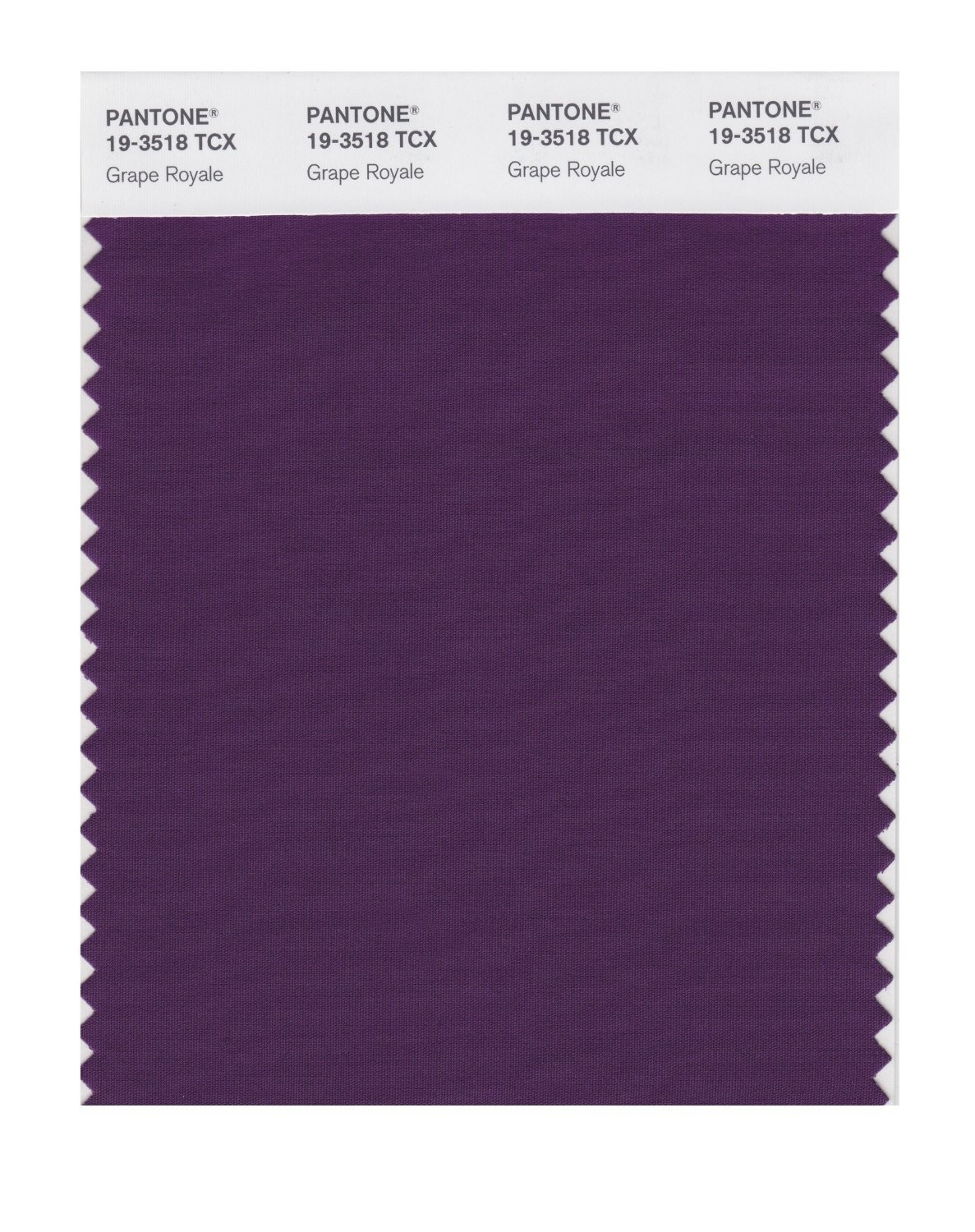 Pantone 19-3518 TCX Swatch Card Grape Royale