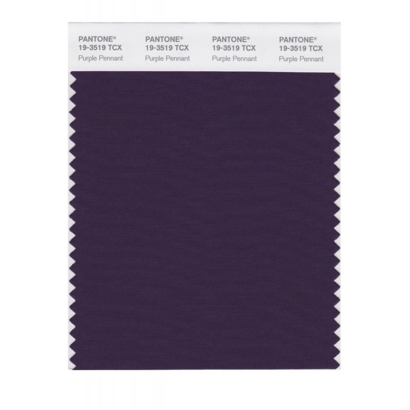 Pantone 19-3519TCX Swatch Card Loganberry
