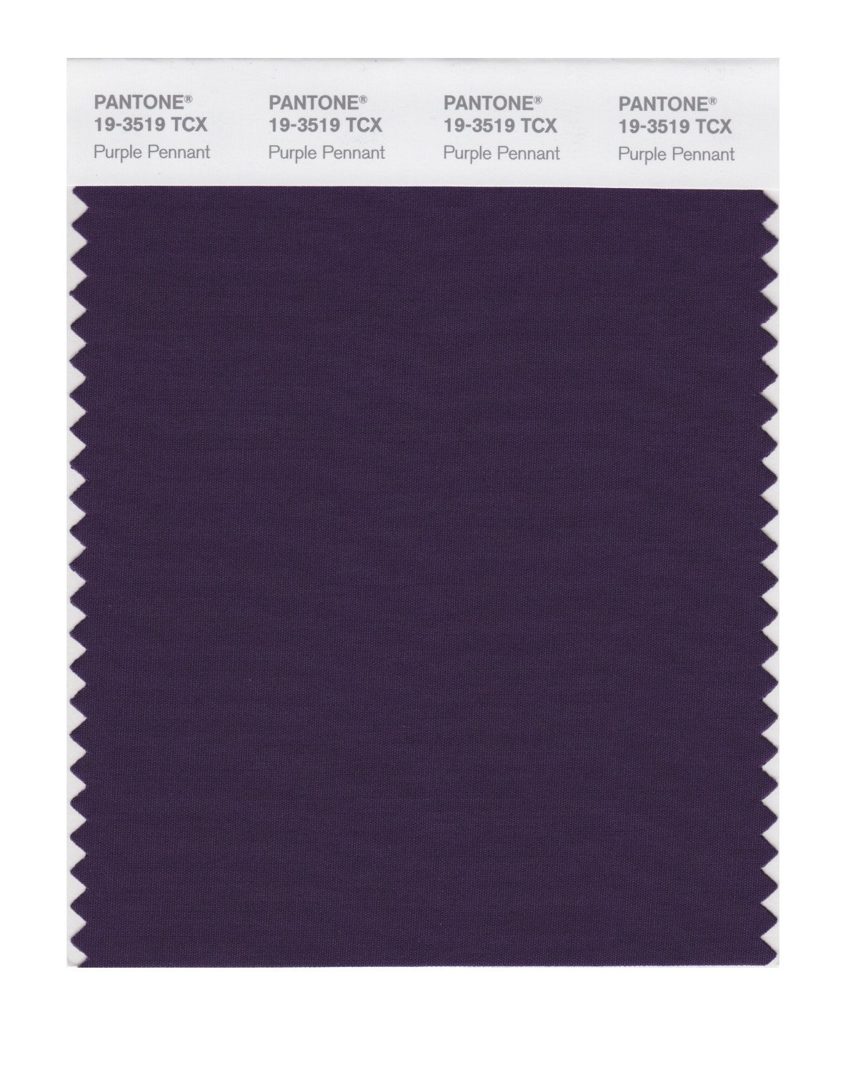 Pantone 19-3519 TCX Swatch Card Purple Pennant