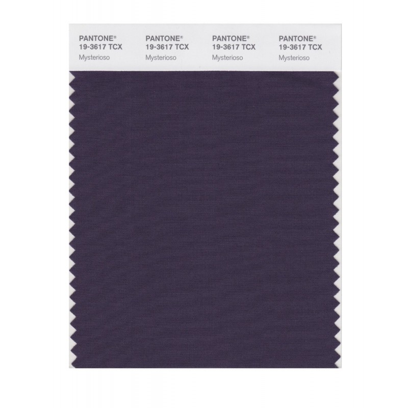 Pantone 19-3617 TCX Swatch Card Loganberry