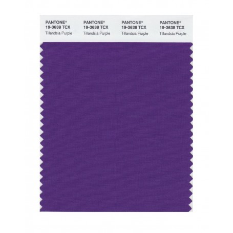 Pantone 19-3638 TCX Swatch Card Tillandsia Purpl