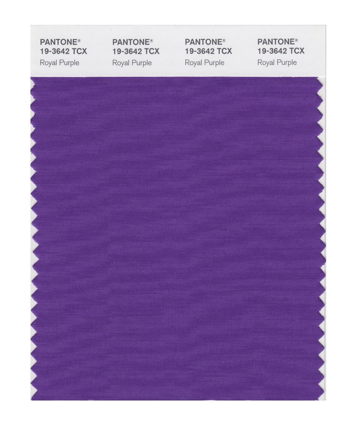 Pantone 19-3642 TCX Swatch Card Royal Purple