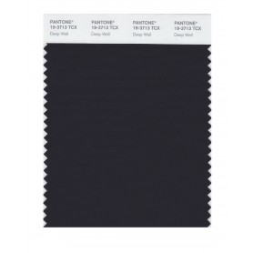 Pantone 19-3713 TCX Swatch Card Deep Well