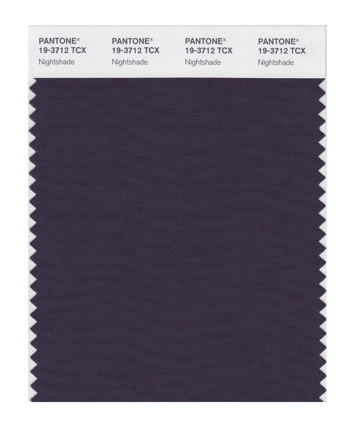 Pantone 19-3712 TCX Swatch Card Nightshade