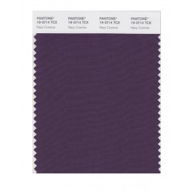 Pantone 19-3714 TCX Swatch Card Navy Cosmos