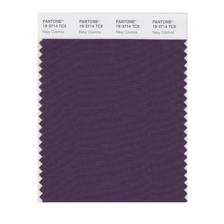 Pantone 19-3714TCX Swatch Card Loganberry