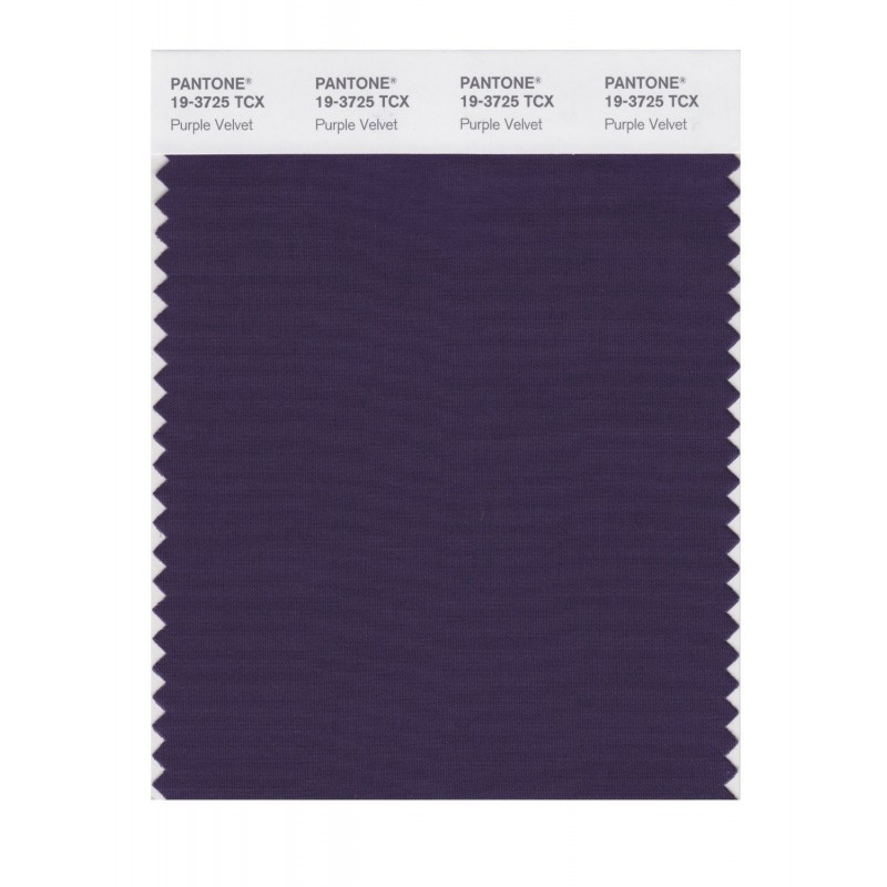 Pantone 19-3725 TCX Swatch Card Purple Velvet
