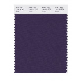 Pantone 19-3728 TCX Swatch Card Grape