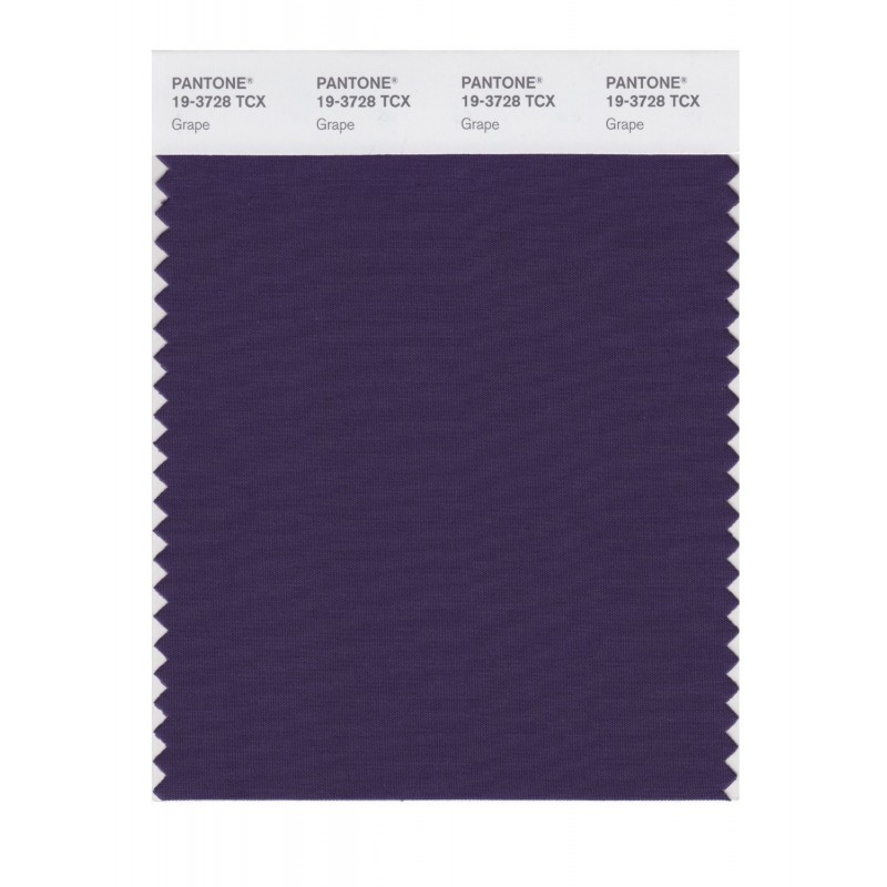 Pantone 19-3728TCX Swatch Card Loganberry