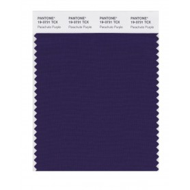 Pantone 19-3731 TCX Swatch Card Parachute Purple